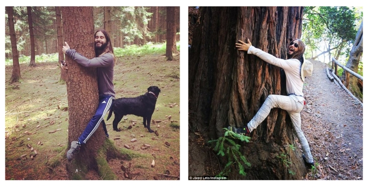 Jared Hugging Tree
