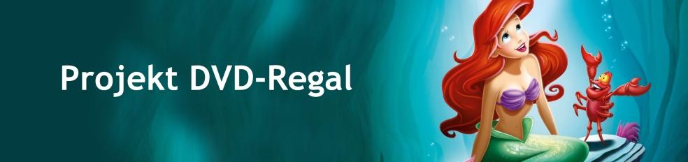 Projekt DVD Regal Arielle